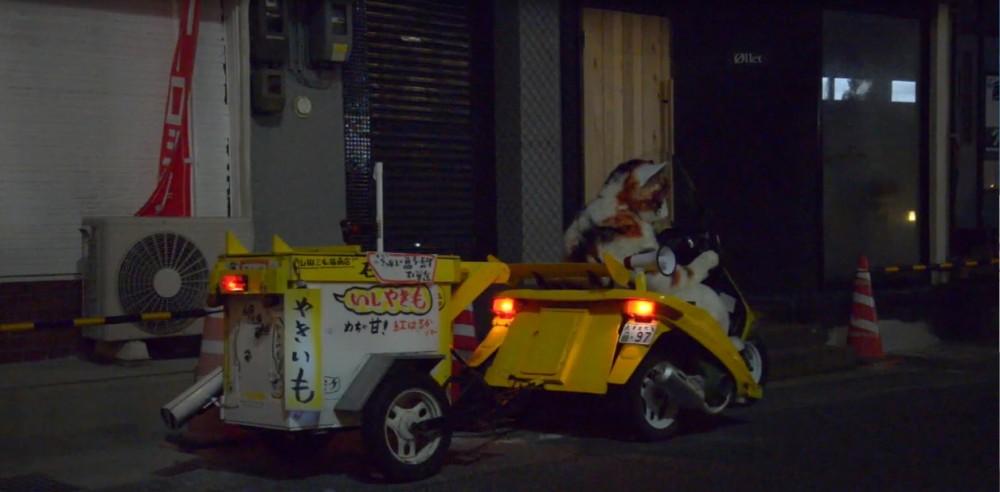 山田三毛猫1