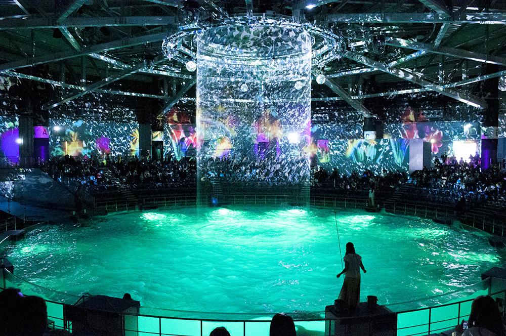 【期間限定イベント取材】アクアパーク品川の「イルカショー」が凄い良かったのでおススメしたい