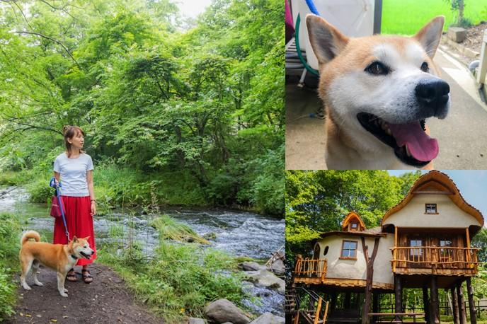 愛犬を連れて旅に出るなら軽井沢!ワンちゃんや子どもと行きたい軽井沢のおすすめスポット