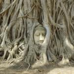【タイ観光】実際に旅行して分かったバンコク近郊エリアのおすすめ観光地&グルメスポット