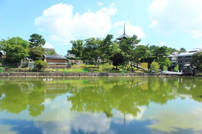 五重塔が池に写り込むフォトスポット