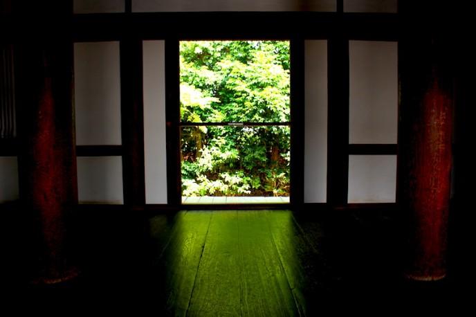 外の緑が床に映り込んでいます