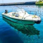 穴場ダイビングツアー!人口20人の高知の離島「鵜来島」で神秘の海を宿泊体験体験!