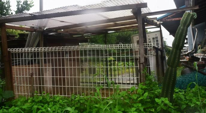 fuji46