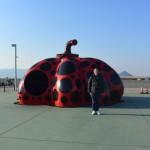瀬戸内海に浮かぶ現代アートの島「直島(なおしま)」と「豊島(てしま)」へ行ってみた!