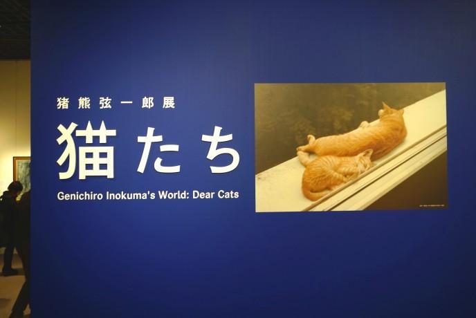 【全猫好き必見】猫を愛しすぎた画家が描いたアート展「猫たち」に急げ!
