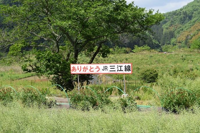 haisen96