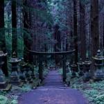 【完全に異世界】Twitterでバズった「上色見熊野座神社」のある高森町に行ってきた
