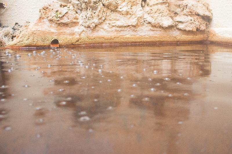 【保養にぴったり】大分県竹田市の炭酸泉&炭酸水素塩泉を特集!