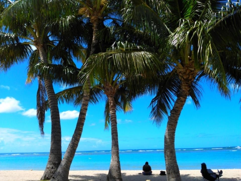 ハワイに持ち込みのヘアアイロンは電圧に対応?ハワイでの購入も解説!
