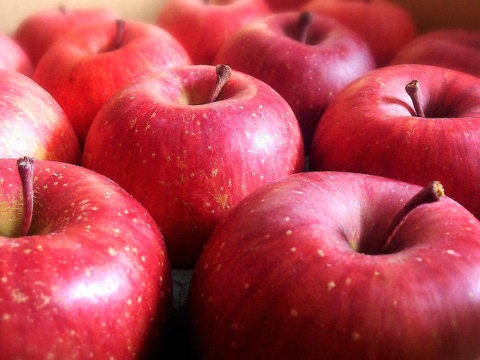 りんごは冷蔵庫保存できる?保存方法や賞味期限は?