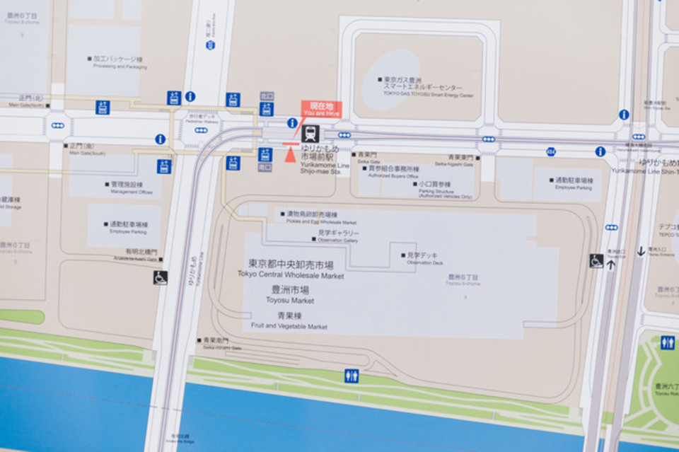 グーグルマップストリートビューをスマホで使用する方法とは?
