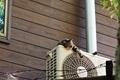 エアコンの室外機から異音!ブーン,キュルキュル等の原因と対処法!