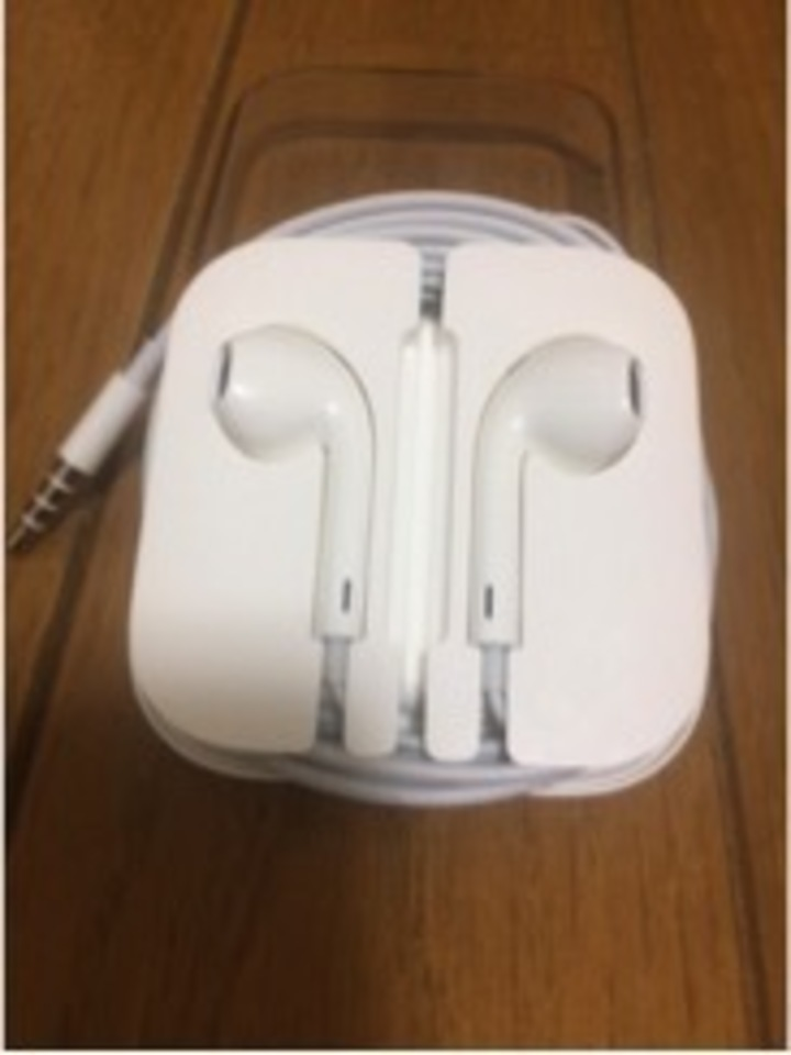 【iPhone5S付属のイヤホン EarPods】
