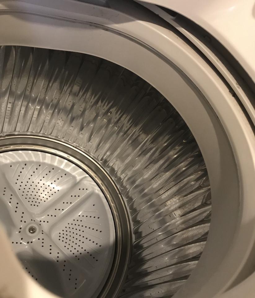 洗濯 機 ワカメ