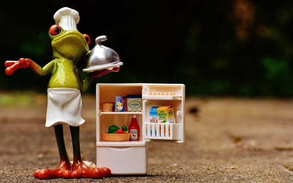 カエルと冷蔵庫