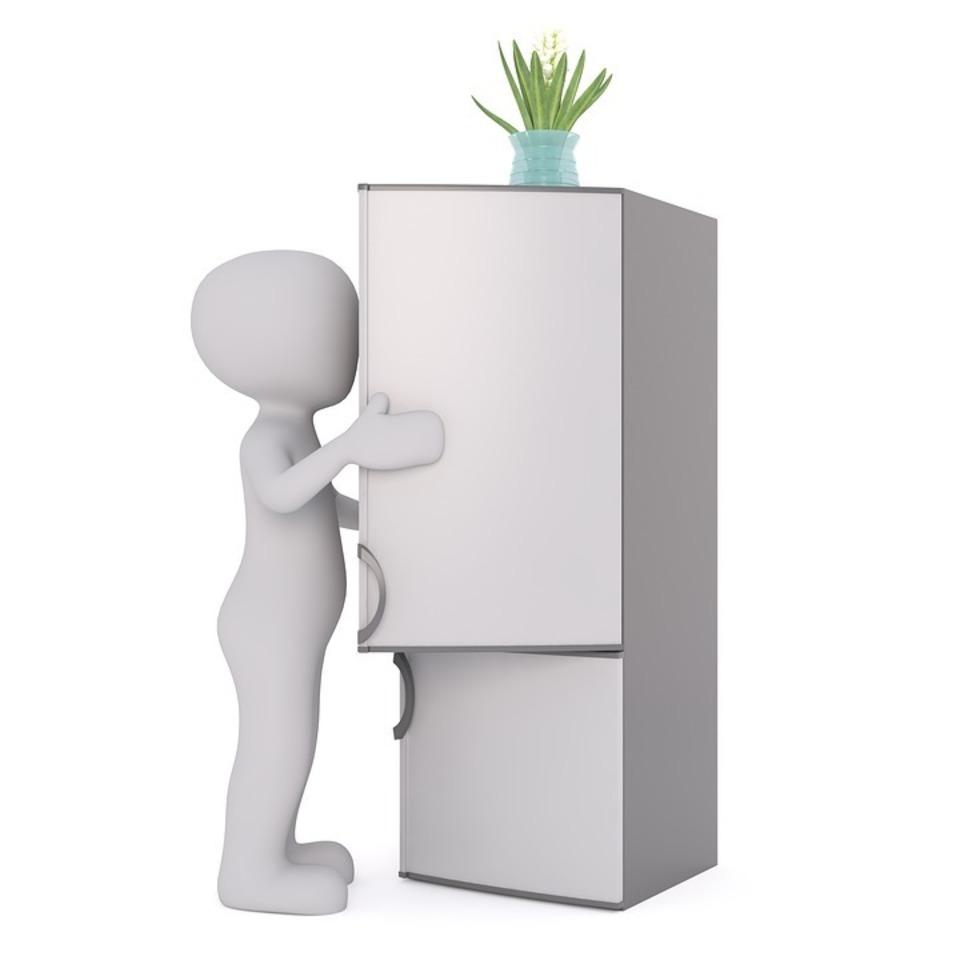 冷蔵庫 処分 無料