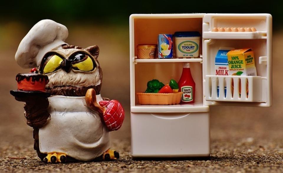冷蔵庫 臭い 消し