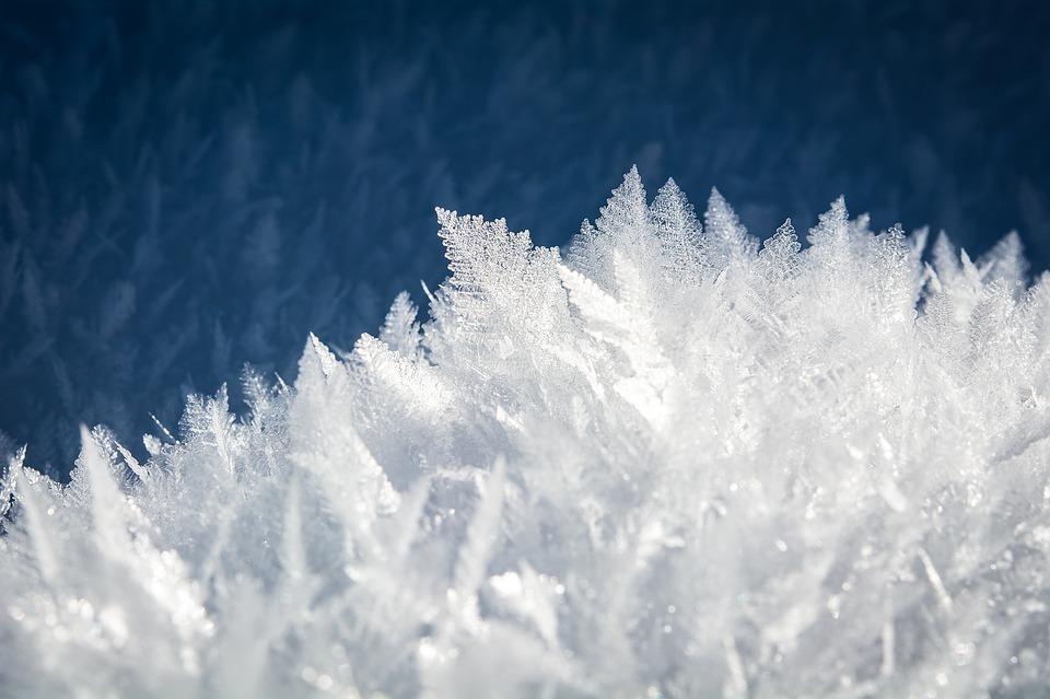 冷凍庫 霜
