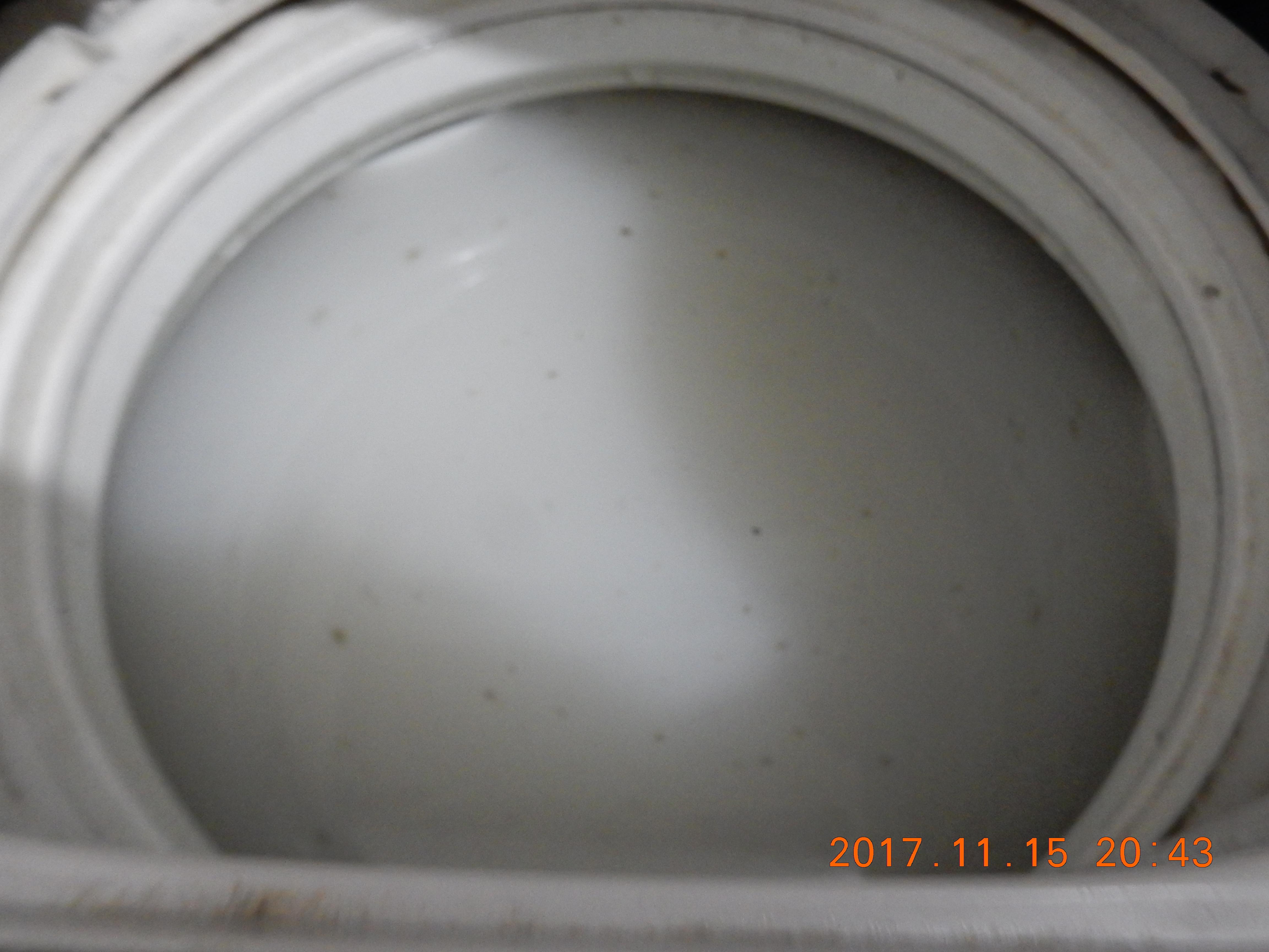 酸素系漂白剤で洗濯槽を掃除して出たごみ・汚れを除去したところ