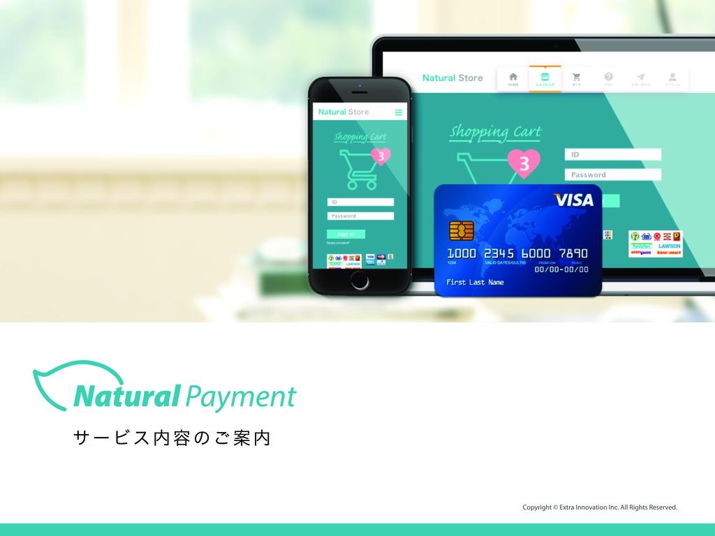 Natural Payment(ナチュラルペイメント)の資料