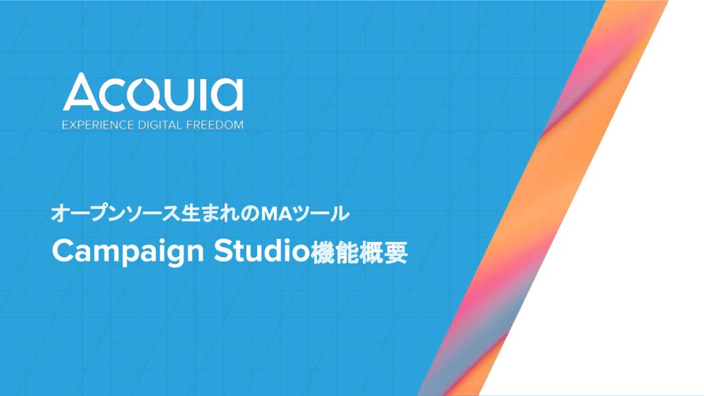 Campaign Studio(キャンペーンスタジオ)の資料