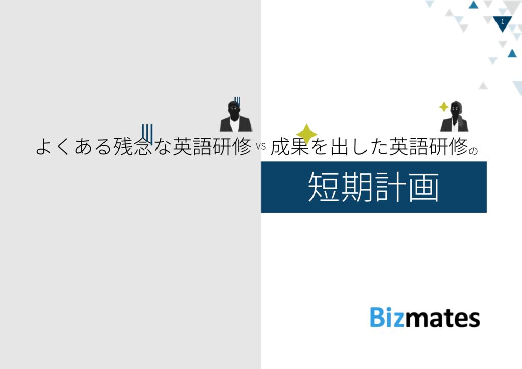オンライン英会話・Bizmates(ビズメイツ)の資料