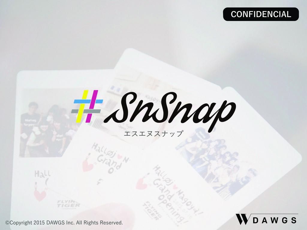 SnSnap(エスエヌスナップ)の資料