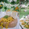 Two Gardens Tagaytay wedding photos small 0/4
