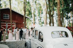 The Forest Barn wedding photos small 0/3