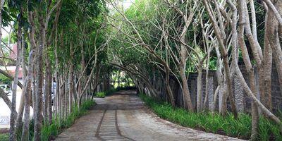 Hacienda Isabella in Indang, Cavite