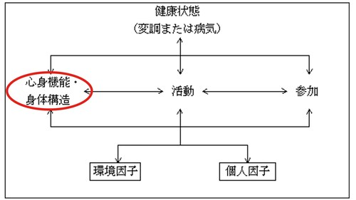 ICF_身体機能