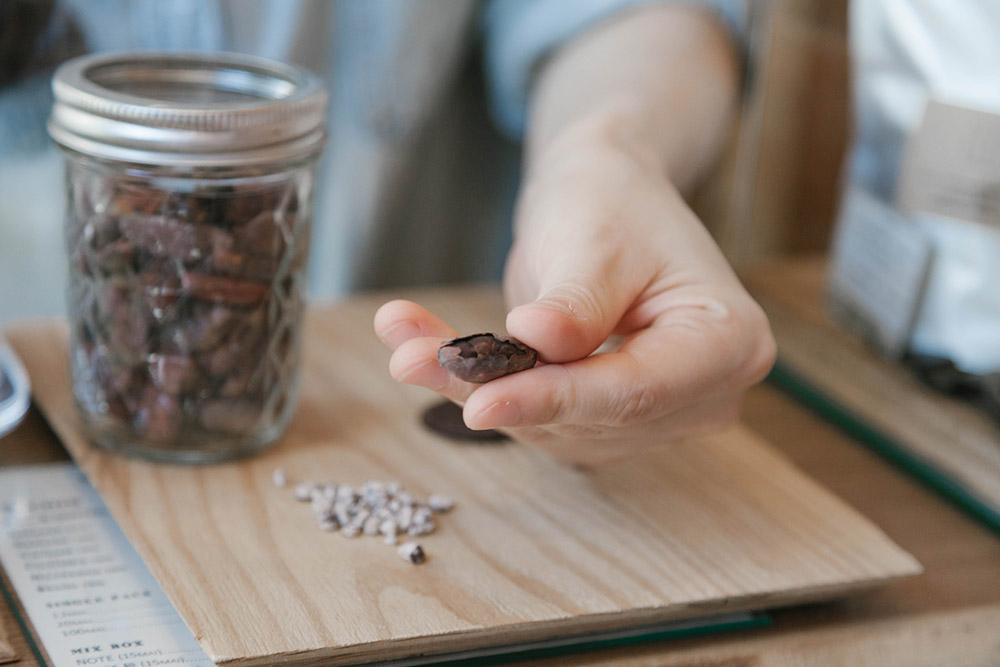 これがカカオ豆。この中にあるニブ(胚乳)の部分を使ってチョコレートが作られる。