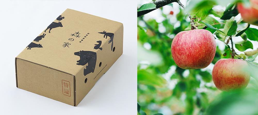 「森の家」と「リンゴリらっぱ」