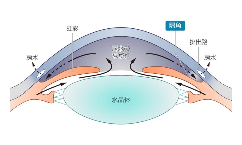 高い 眼 圧 眼圧が高くなってしまう理由はなんなんでしょうか?下げる方法も!