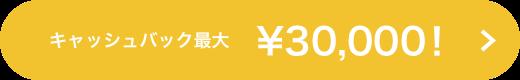 キャッシュバック最大¥30,000!