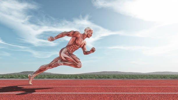 トレーニング 高める 瞬発 を 力 瞬発力を鍛えるメリットとは。「プライオメトリクストレーニング」で効果的に運動能力を鍛える