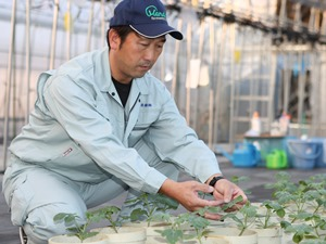 万田発酵株式会社/アグリバイオ事業 農業技術者★農業の知識、経験が活かせる仕事です!