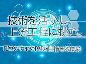 株式会社ティーネットジャパン/上流工程やマネジメントへの挑戦を目指すPG・SE(PL・PM・ITコンサル候補)