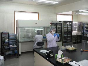 シーアンドエス株式会社/微生物、昆虫管理技術者(未経験から専門的なスキルを身につけられます)