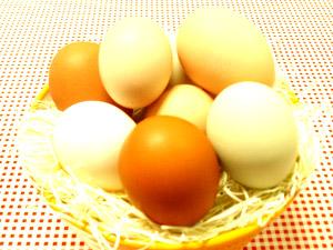東京中央鳥卵株式会社/おいしい卵を提供する総合職【ルート配送/ルート営業】固定顧客9割/退職金制度有/定着率9割以上)