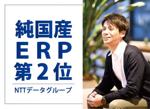 株式会社NTTデータ・ビズインテグラル(NTTデータグループ)/ERPパッケージ開発(プロジェクトリーダー候補)/月給42万円~/大手企業向けERPパッケージ市場2位