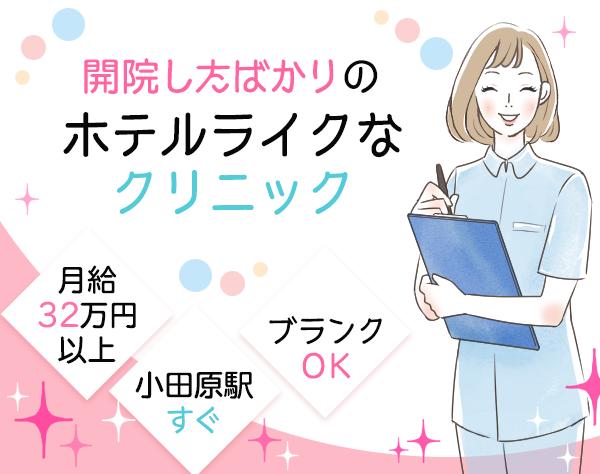 小田原レディスクリニックの求人情報