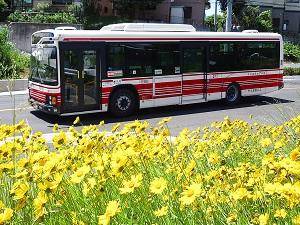 小田急バス株式会社の求人情報