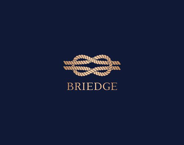 ブライエッジ株式会社/人材コンサルティング営業/週1回リモートワーク可/営業スキルを高められる