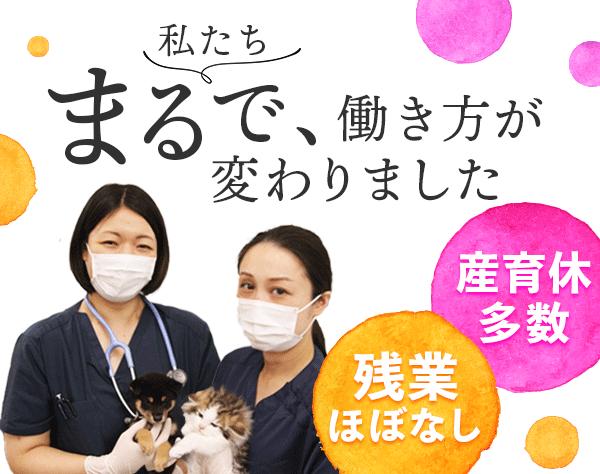 ペッツファースト株式会社/子犬・子猫の健康管理職(獣医師・動物看護師)★70%が女性★完全週休2日