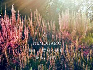 株式会社ビオスタイル【NEMOHAMO】/WEBデザイナー/年休120日/残業少なめ/自社コスメ社割有