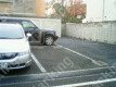 弥生2 月極駐車場の周辺写真