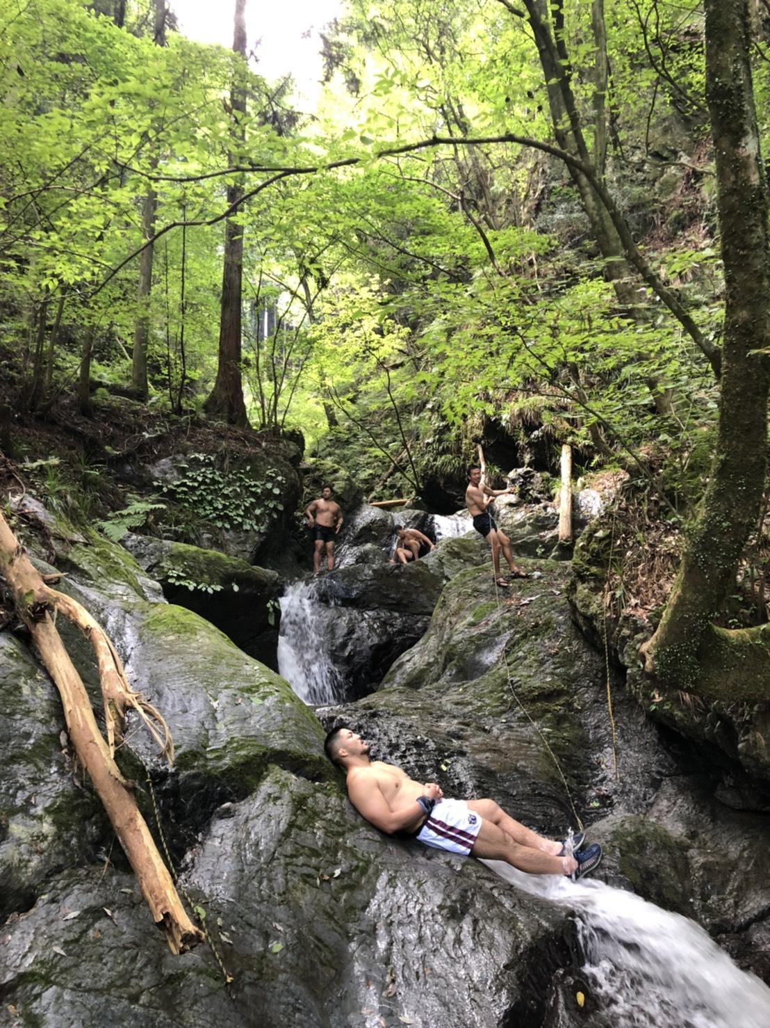 森の中の楽園