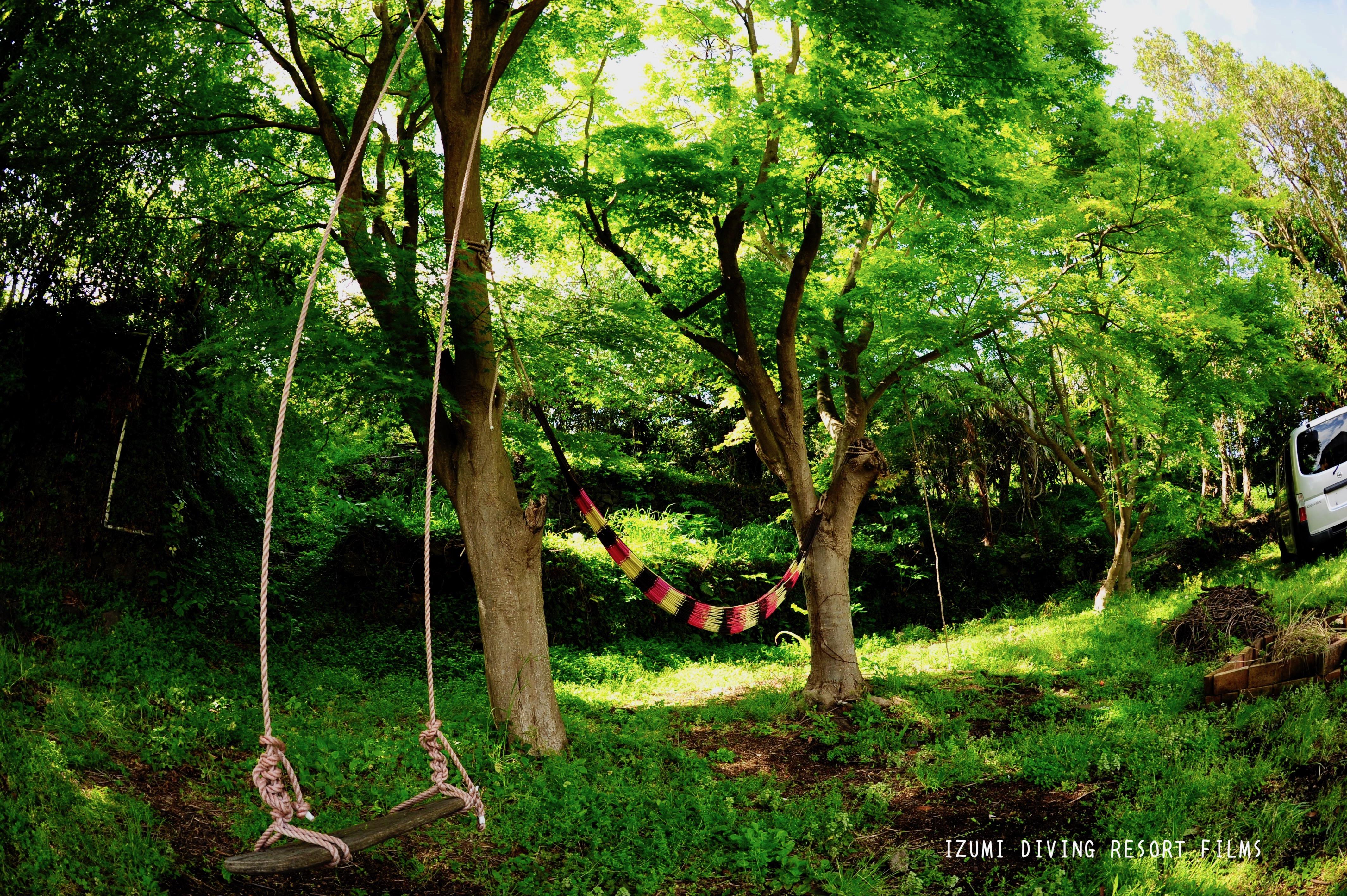 伊豆海の森